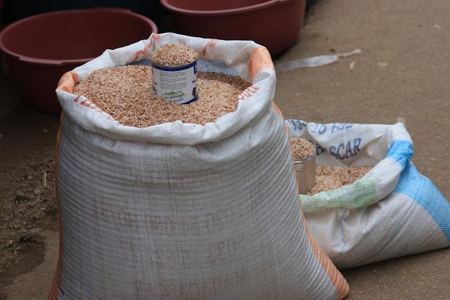 Provision of agricultural inputs (seeds, fertiliser, agricultural tools, etc.)